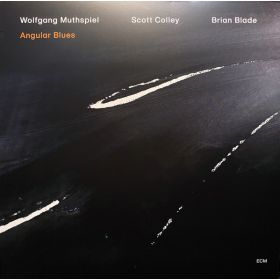 Wolfgang Muthspiel, Scott Colley / Brian Blade - Angular Blues