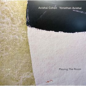 Avishai Cohen / Yonathan Avishai - Playing The Room