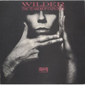 The Teardrop Explodes - Wilder