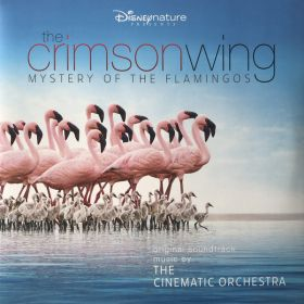 The Cinematic Orchestra - The Crimson Wing - Mystery Of The Flamingos