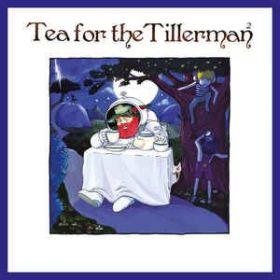 Yusuf / Cat Stevens – Tea For The Tillerman² (2020, Vinyl)