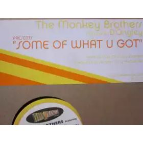 The Monkey Brothers – Some Of What U Got (2001, Vinyl)